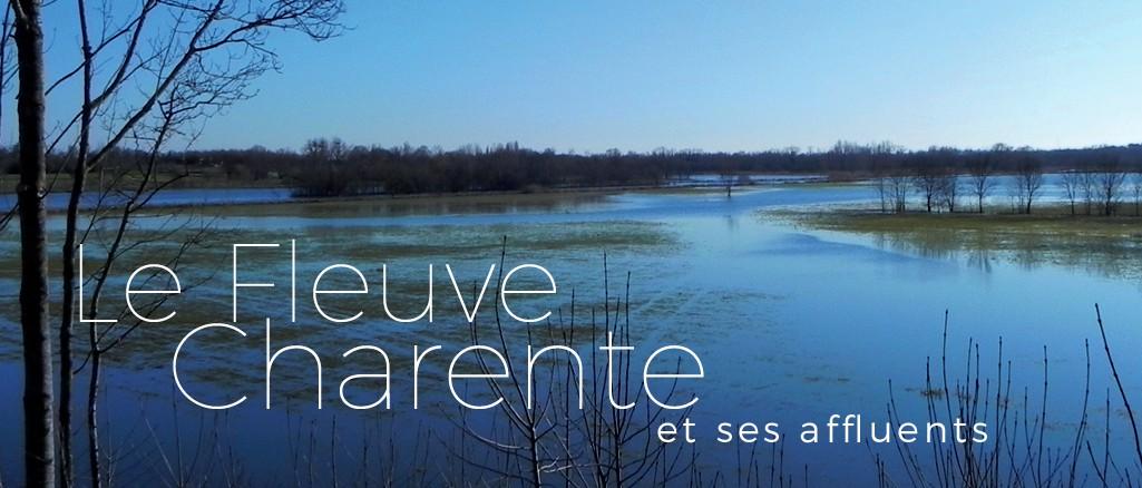 La Charente à Saintes